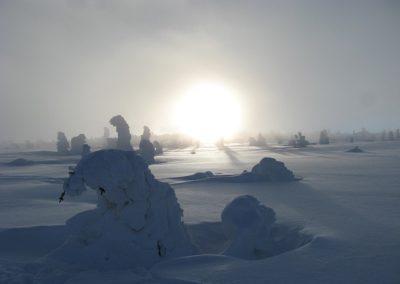 winter-561467_640